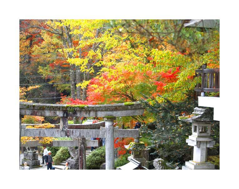 Komine~keHara shrine 2011